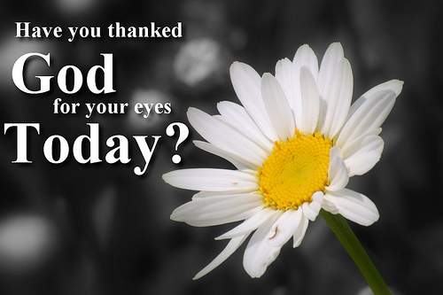 Have You Thanked God for Your Eyes Today?