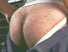 Hairy butts are the best