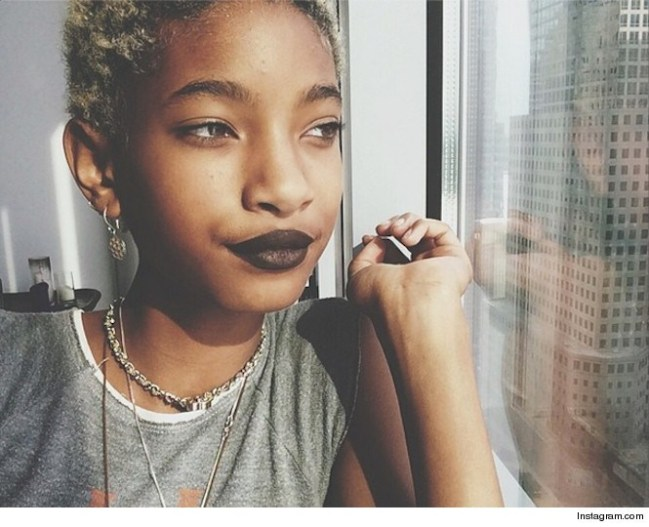 Willow Smith's Topless Picture in support of #FreeTheNipple Instagram Campaign Causes an Uproar Online